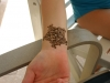 henna-corporate-entertaiment-14