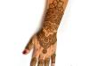 henna_hand_orlando