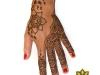 henna_orlando_hand_design