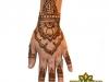 henna_orlando_hand_design_1