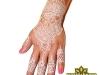 white_henna_orlando