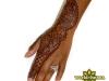 hand_henna_jagua_orlando